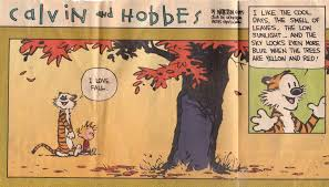 calvin hobbes fall learn more every day