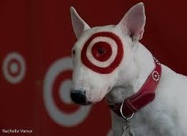 target hilo black friday 32 best target dog images on pinterest target bullies and dog stuff