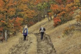 fall colors heraldandnews