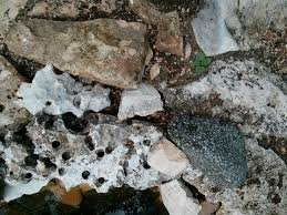landscape fabric alternatives river rock in the landscape means no water not no maintenance