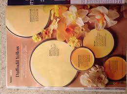 better homes and gardens daffodil yellow paint samples