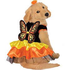 Woodstock Halloween Costume Pet Halloween Costumes Dog Costumes Kmart