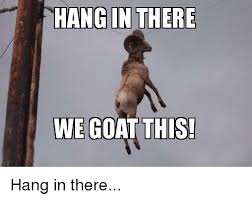 Hang In There Meme - hang in there we goat this goat meme on me me