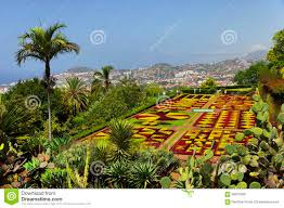 famous tropical botanical gardens in funchal stock photo image