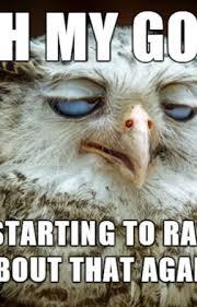Owl Memes - random insanity on hold ridiculous owl memes wattpad