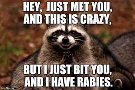Call Me Maybe Meme - call me maybe animal meme me best of the funny meme