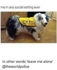 Shy Meme - me in any social settingever i m shy please giveme space in other