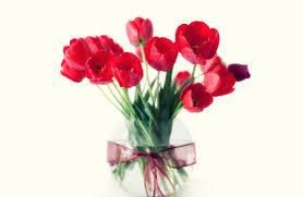 3d Flower Vase Still Red Flowers Life Decoration Vase Ribbon Tulips Home Style