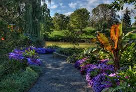 Botanical Garden Definition by Flowers Chicago Garden Botanic Hd Flower Nature For Hd 16 9 High