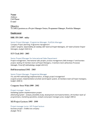 resume template free combination templates simple and for word