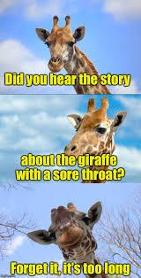 Giraffe Meme - bad pun giraffe memes imgflip