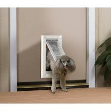 cool patio pacific pet door ideas u2013 dog doors for storm doors