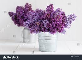 Flowers Decoration In Home Two Bouquet Lilac Flowers Zinc Pots Stock Photo 189037043