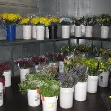 Flower Wholesale Fresh Flowers Wholesale 105 Photos U0026 54 Reviews Florists