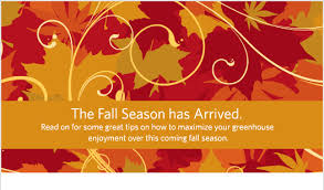 thanksgiving cards thanksgiving fall season cards autumn season of