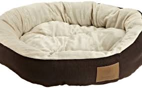 How To Have The Most Comfortable Bed Online Safety Essentials Tips On Finding The Most Comfortable Dog