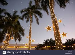 Commercial Christmas Decorations Miami by Christmas Lights In Miami Christmas Lights Decoration