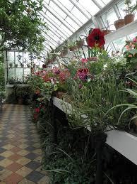 58 best garden cafe images on pinterest gardening greenhouses