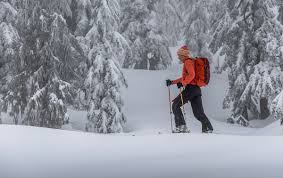best backcountry skis of 2017 2018 switchback travel
