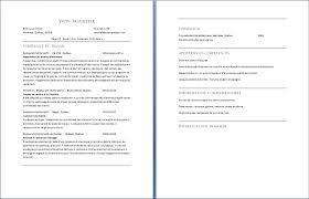 Cv Quebec by Can Someone Write My Essay For Me Cheap Exemple Cv Quebec