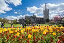 st patrick u0027s day 2017 a local u0027s guide to dublin u0027s biggest festival