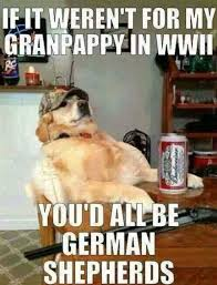 Stubborn Memes - just a stubborn old veteran dog laugh and move along silliness