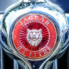 jaguar car icon best 25 jaguar car symbol ideas on pinterest jaguar car photos
