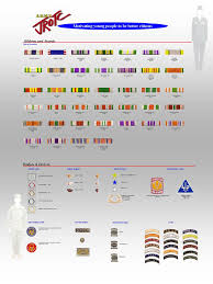 Us Army Decorations Ribbons And Ranking System U S Army J R O T C Parkdale Hs U S