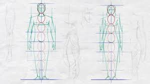 How To Draw Female Anatomy Easy Steps To Figure Drawing Anatomy Of Male U0026 Female Body Udemy