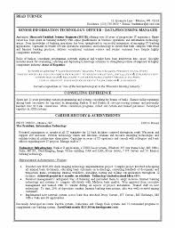 resume format information technology gallery of great resumes exles great resumes exles