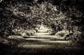 spirit halloween utah scary stories utah u0027s own ghost tales make for great halloween