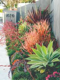 create a drought friendly landscape originally featured on a