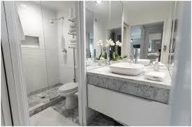 Bathroom Design Basics Bathroom Basement Bathroom Design Bathroom Designing Ideas Home
