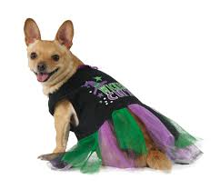 small dog witch costume batman dog costume buycostumes com witch cat costume witch cat