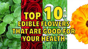 Edible Flowers Top 10 Edible Flowers That Are Good For Your Health