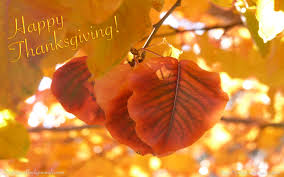 thanksgiving screen savers happy thanksgiving hd images pictures u0026 wallpapers collection