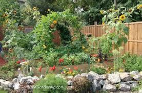 Backyard Vegetable Garden Ideas Backyard Vegetable Garden Gardening Design