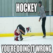 Hockey Memes - 24 really funny hockey memes page 1