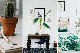 une plante dans une chambre quelles plantes dans une chambre