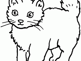 coloring page cats coloring page for kids