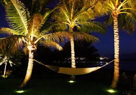 Landscape Lighting Pictures Page