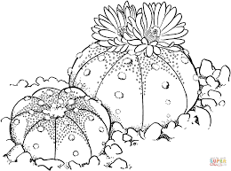 cactus coloring pages olegandreev me
