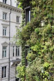 green hotel in mayfair london the athenaeum living wall