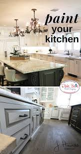 best company to paint kitchen cabinets how to paint with light colors dixie paint company