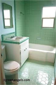 Light Green Bathroom Ideas Black And Pink Bathroom Ideas Alluring Light Green Bathroom Color