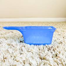 the best diy carpet cleaning solutions angela says