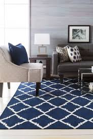 Carpet In Living Room by Best 25 Navy Rug Ideas On Pinterest Grey Laundry Room Furniture