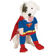dog clothes for halloween amazon com rubie u0027s 50570 s superman dog costume small pet