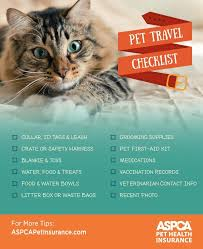 Colorado how to travel with a cat images 202 best travelling with your pet ideas images jpg