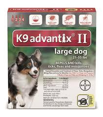 australian shepherd kills child k9 advantix ii large dog flea u0026 tick control 4 doses rural king